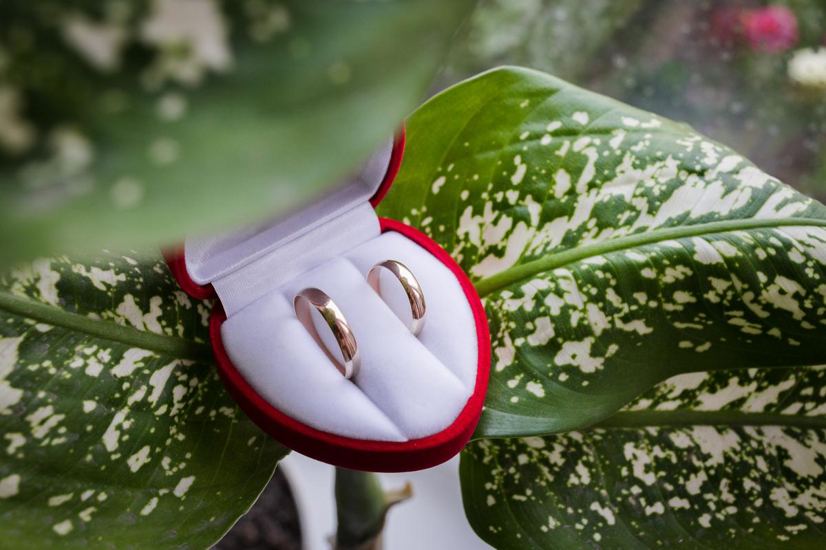 Свадьба в Житомире Дима и Даша